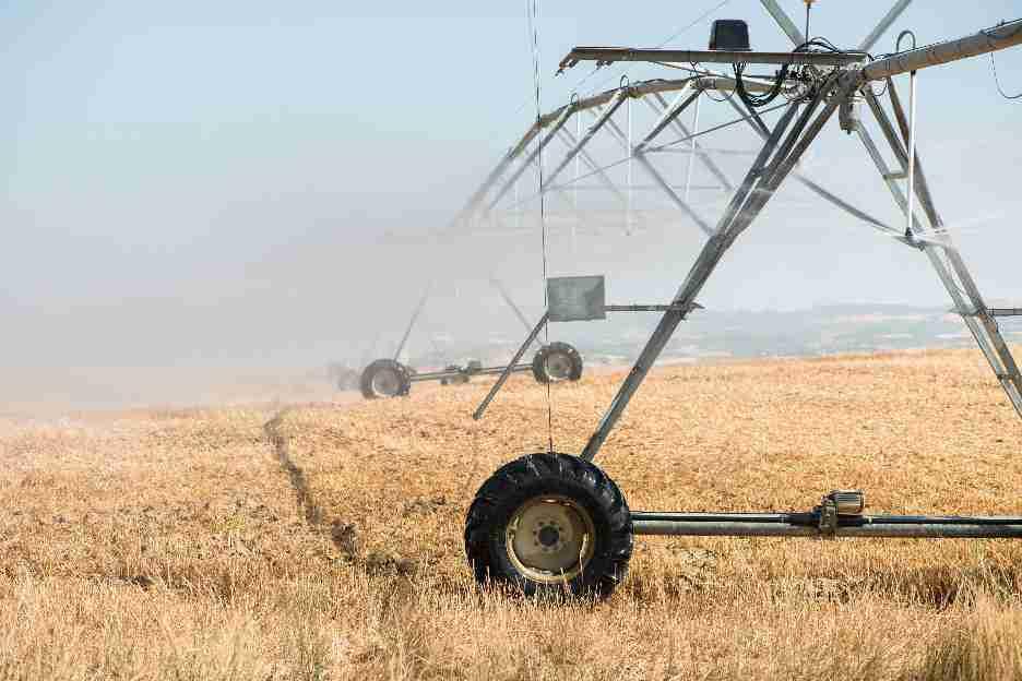 A importância da integração e da sustentabilidade para o sucesso do agronegócio