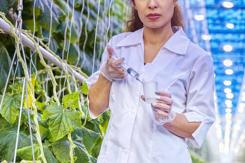 Academia de Liderança das Mulheres do Agro é criada – CONFIRA O PROGRAMA!