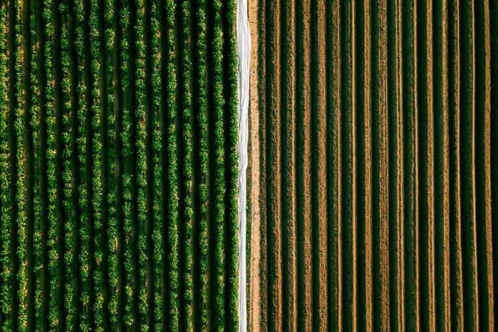 O agro em um horizonte de incertezas
