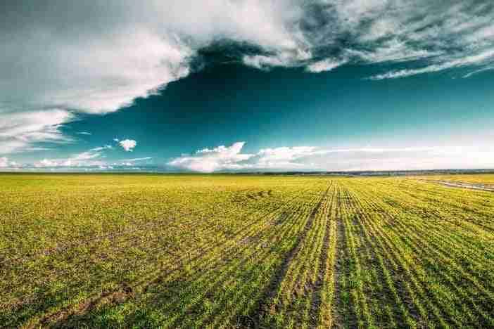 Falta do conservacionismo é obstáculo para uma agricultura sustentável
