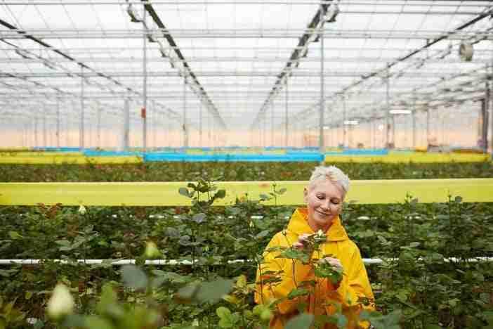 Terceira edição do Prêmio Mulheres do Agro!