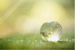 Abag neutraliza emissões de carbono de 2019 por meio de CBios