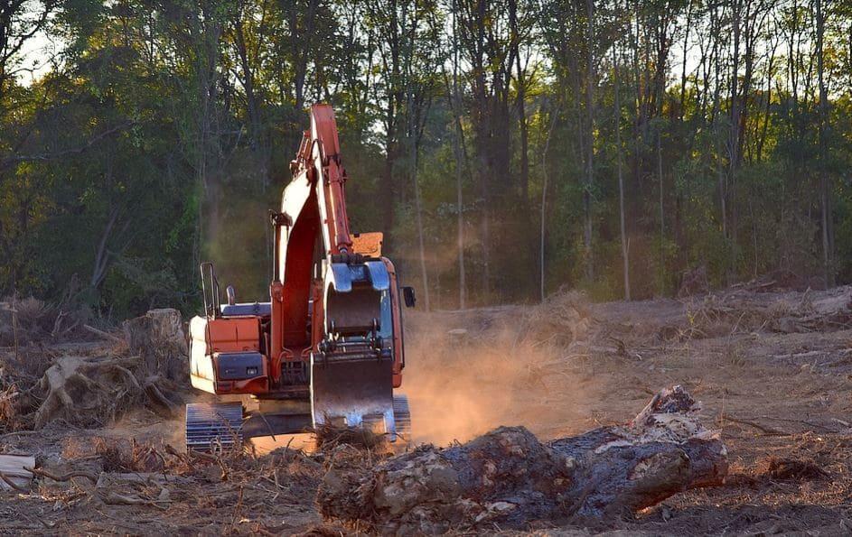 Ações para a Queda Rápida do Desmatamento