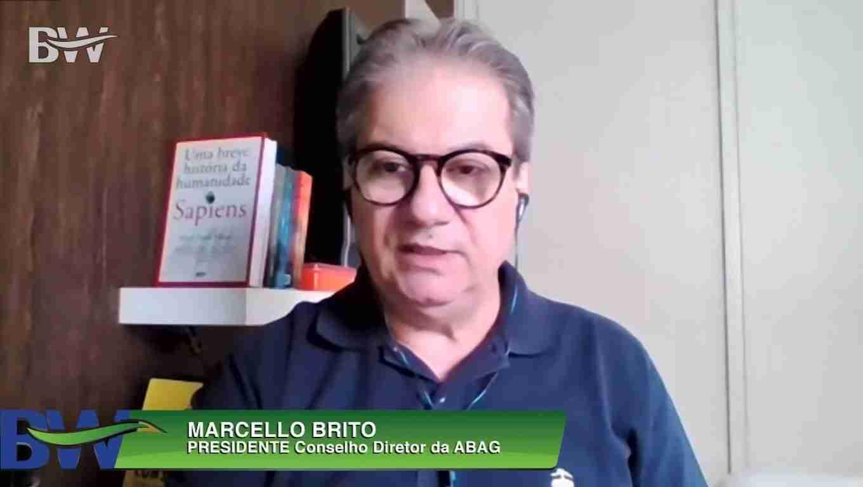 Imagem ambiental do Brasil no mercado externo pode impactar o agronegócio no longo prazo